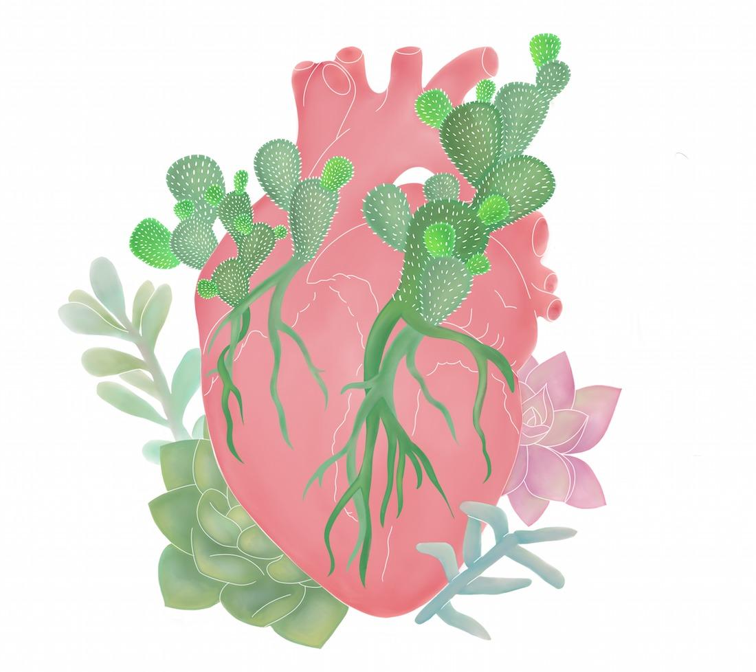 corazón desierto jardín