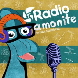 radio amonite
